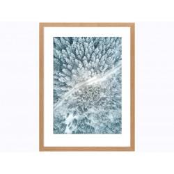 """Постер в раме """"Снежный лес"""""""