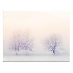 """Скинали """"Розовый туман"""""""
