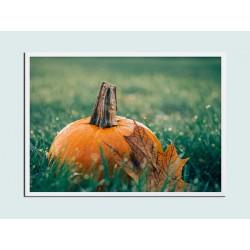 """Постер в раме """"Pumpkin"""""""