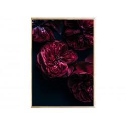 """Постер в рамі """"Rose"""""""