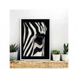 "Постер в рамі ""Zebra"""