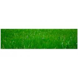 """Скіналі """"Grass"""""""