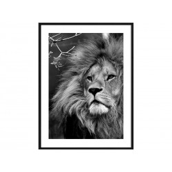 """Постер в раме """"Leo"""""""