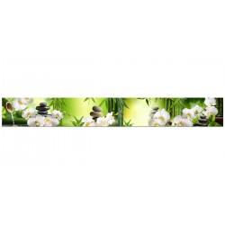 "Скіналі ""Білі орхідеї"""
