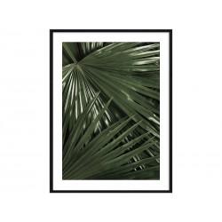 """Постер в раме """"Palm"""""""