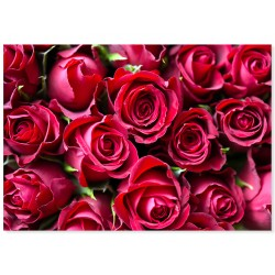 "Фотокартина ""Троянди"""