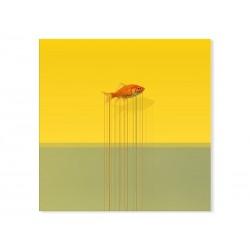 "Фотокартина ""Goldfish"""