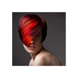 """Фотокартина """"Color"""""""