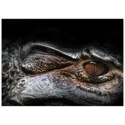"Фотокартина ""Alligator"""
