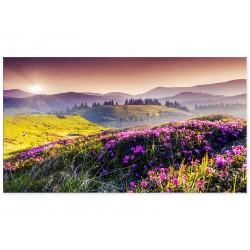 """Фотокартина """"Квіткове поле"""""""