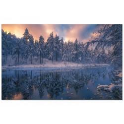 """Фотокартина """"Зимовий ліс"""""""