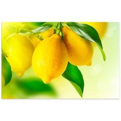 "Фотокартина ""Лимон"""