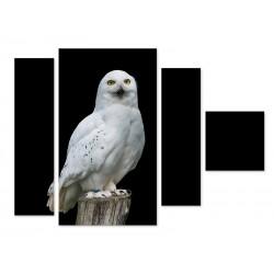 "Модульна картина ""Сніжна сова"""