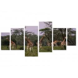 "Модульна картина ""Safari"""