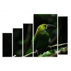 "Модульна картина ""Bird"""