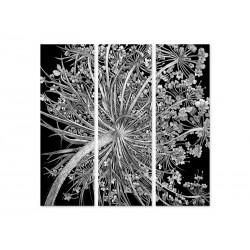 """Модульна картина """"Dried flowers"""""""