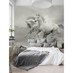 """Фотошпалери """"White horses"""""""