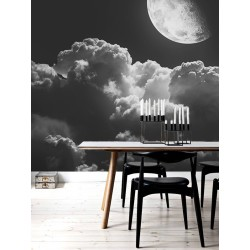 "Фотошпалери ""Moon"""