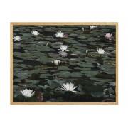 """Постер в рамці """"Water Lilies"""""""