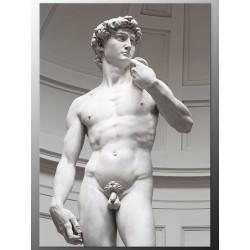 "Постер ""David. Michelangelo"""