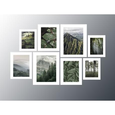 """Серія постерів в рамках """"Nature"""""""